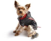 Pršiplášť pre psa Teda čierno červená s COOLMAX podšívkou