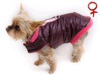 Obleček - vesta pro psa Bela vínovo růžová - fenka