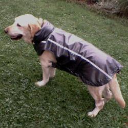 pršiplášť pre psa