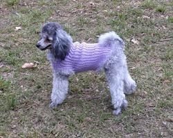 sveter pre psa